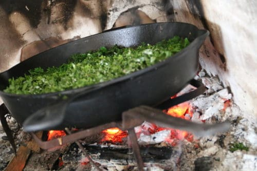 Forårets vilde køkken