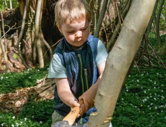 Dreng Skovfestival