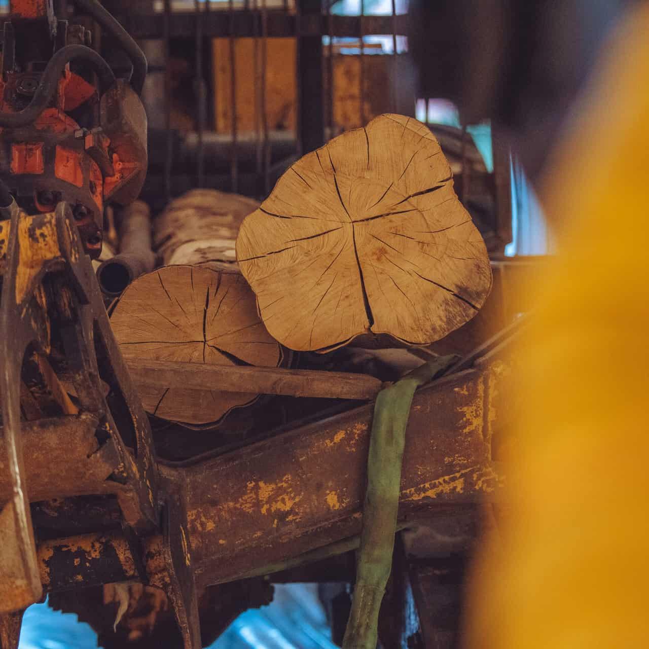 oplev de store skovmaskiner i udstillingen STORT