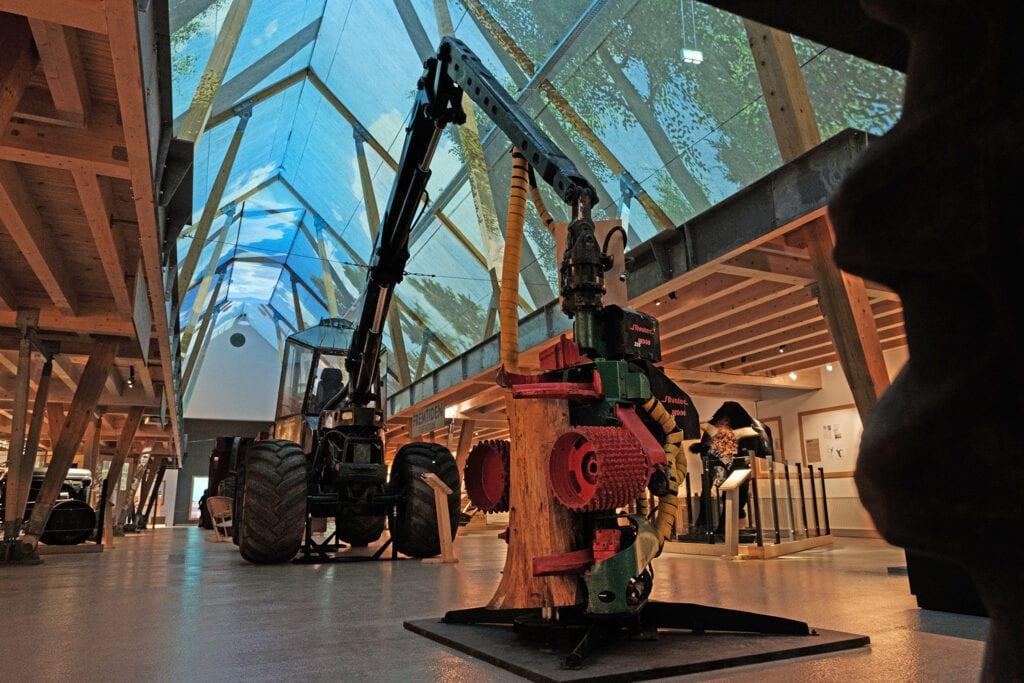 Udstillingen STORT – Mennesket og Skoven er Det Grønne Museums udstilling om skovens Danmarkshistorie.